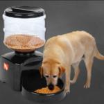 Mejores Comederos Automaticos Para Perros Del 2020